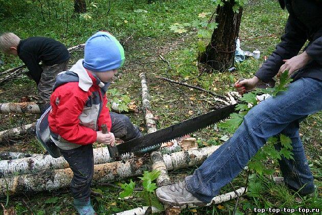 Пилка дров